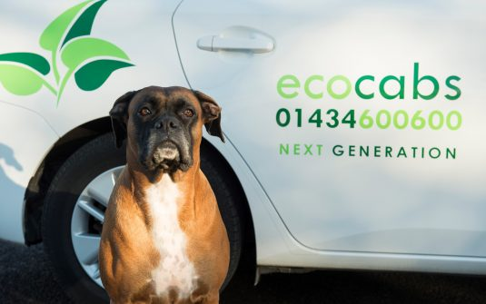 Roody Boxer EcoCabs